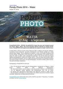 zoom-pondy-1