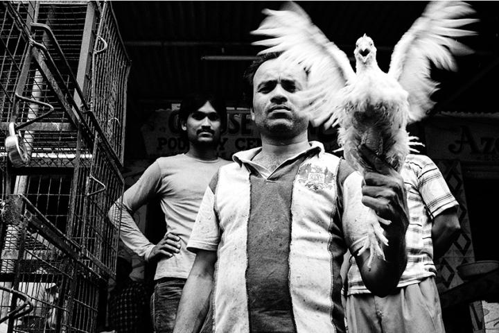 KaushalParikh-MovingImages-3
